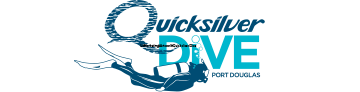 Quicksilver Dive Logo